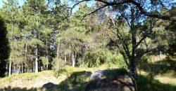 Condomínio Village da Montanha – Vila do Prado – Chácara 51 – Rancho Queimado – SC