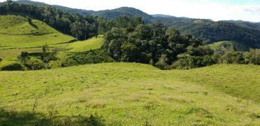 Sítio de 22 Hectare no Distrito de Taquaras – Próximo a Rancho Queimado- Recanto das Cachoeiras.