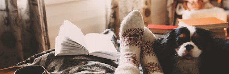 Sofrendo com o inverno? Saiba como aquecer a casa com essas 8 dicas