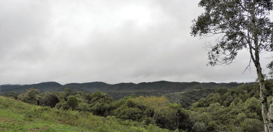 Condomínio Verdes Colinas – Chácara 112 – Rancho Queimado – SC