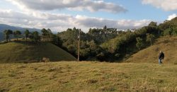 Sítio de 15 Hectares na linha scharf próximo ao centro de Rancho Queimado – SC