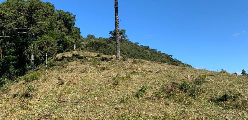 Terreno em Área Urbana com 6.5 Hectare – Rancho Queimado – SC