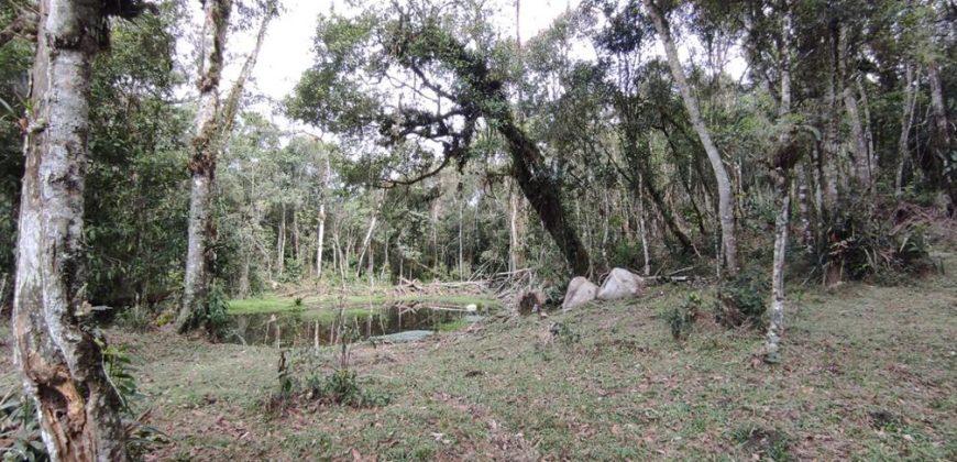 Sítio de 33 hectares no Rio das Antas – Rancho Queimado – SC