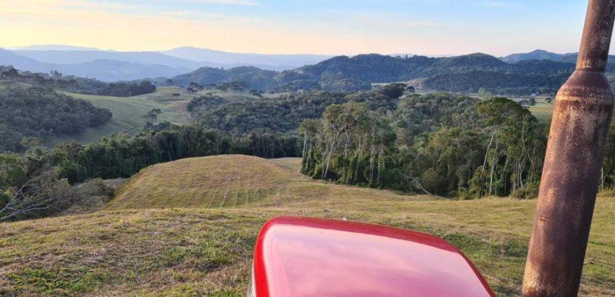 Sitio de 27 hectares bem aproveitáveis no Vargedo – Rancho Queimado – SC